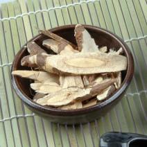 골담초뿌리
